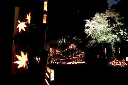 園内の竹を使用して灯籠を作りました。